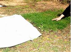 use of polythene sheets for your lawn lawns in spain