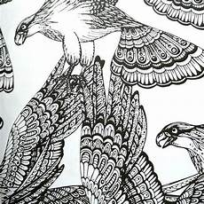 adult coloring book everyone loves coloring birds
