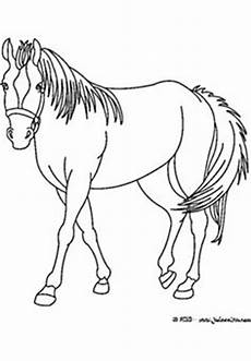 Ausmalbilder Prinzessin Mit Pferd Horses Coloring Sheets 037 Free Printable And