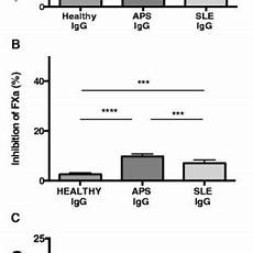 pdf anti factor xa antibodies in patients with antiphospholipid syndrome and their effects