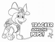 paw patrol malvorlagen tracker paw patrol tracker coloring pages getcoloringpages