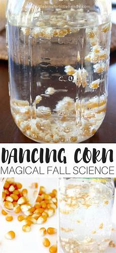 science worksheets on thanksgiving 12322 thanksgiving science activities for with m m s pumpkins corn
