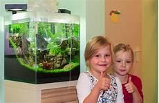 Ein Kita Aquarium De Luxe My Fish Aus Freude An Der