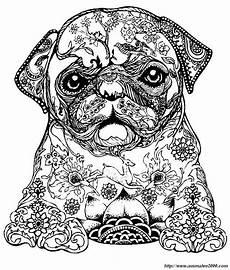 Ausmalbilder Hunde Schwer Ausmalbild Ein Kleiner Hund Malvorlagen Tiere