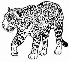 jaguar coloring page animals town animals color sheet
