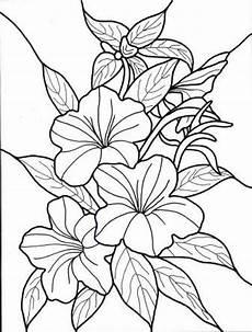 hawaiian flower colouring pages page 2 hawaiian flowers