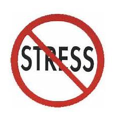 Anti Stress - anti stress quotes mommyconsultnyc