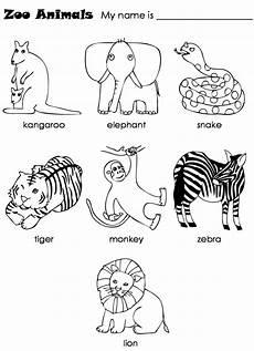 zoo animal worksheets kindergarten 14321 new 819 worksheets with zoo animals zoo worksheet