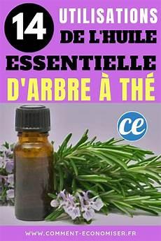 l huile d arbre à thé huile essentielle d arbre 224 th 233 14 utilisations 224
