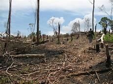 Bencana Alam Kesalahan Manusia Dalam Pengelolaan Alam
