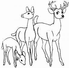 Ausmalbilder Pferde Im Winter Rehe Jpg 620 215 615 Malvorlagen Tiere Malvorlagen Pferde
