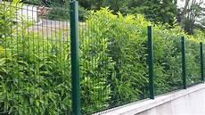 Cloture En Panneau Soudé Grillage Soud 233 Vert Pro Grillage Rigide Vert En Panneaux