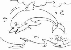 Malvorlagen Delfin J Malvorlage Delfin Ausmalbild 27233
