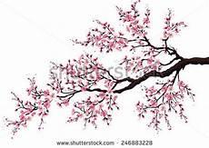 fleur de cerisier dessin fleurs de cerisier japonais images gratuites sur