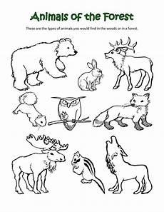 Ausmalbilder Verschiedene Tiere 7 Best Images Of Animal Habitats Coloring Printables