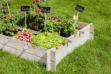 jardin en aout que semer et r 233 colter dans votre potager en ao 251 t au