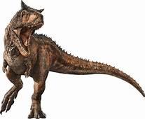 Carnotaurus  Dinosaur Wiki FANDOM Powered By Wikia