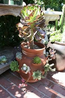 vasi con fiori vasi di fiori 30 idee originali per illuminare il tuo