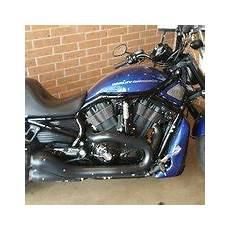 Gruene Harley Davidson New Braunfels by Gruene Harley Davidson 22 Photos 19 Reviews