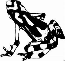 Frosch Malvorlagen Tiere Gefleckter Frosch Ausmalbild Malvorlage Tiere