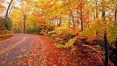 Fall Nature Computer Backgrounds nature fall wallpapers wallpaper cave