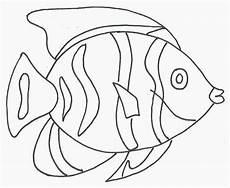 Fische Malvorlagen Zum Ausdrucken Ebay Ausmalbilder Fische Gratis Ausmalbilder F 252 R Kinder