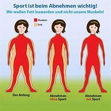 Abnehmen Ohne Sport Was Wirklich Jeder Wissen Sollte