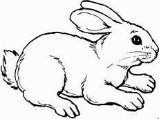 Osterhase Malvorlagen Gratis Einfach Sitzender Hase 3 Ausmalbild Malvorlage Tiere