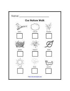 nature printable worksheets for preschool 15119 science center set up and ideas for preschool preschool science kindergarten science free