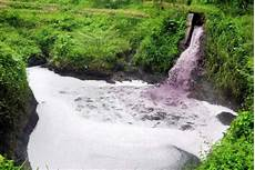Sungai Progo Tercemar Obat Kimia Dan Limbah Pabrik