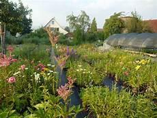 staudengärtnerei gaissmayer veranstaltungen eulenhof staudeng 228 rtnerei bioterra biogarten