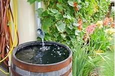 kann regenwasser trinken regenwasser sammeln sinnvoll nutzen testbewertungen