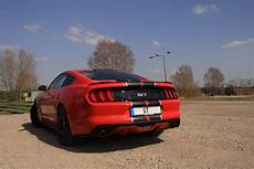 ford mustang gt 5 0 im shelby design mieten und selbst