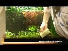 aquarium scheibenreinigung mit schwamm