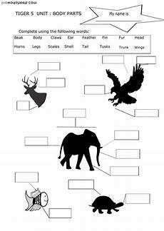 animal parts worksheets esl 14296 parts interactive worksheet