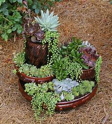 picture mini succulent tower homebnc