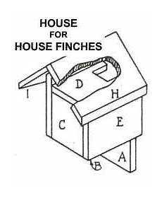 finch house plans house finches bird house plans bird house plans bird