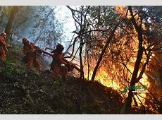 四川凉山森林大火