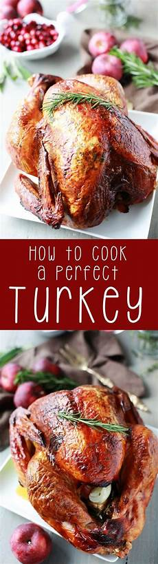 how to cook a perfect turkey eazy peazy mealz