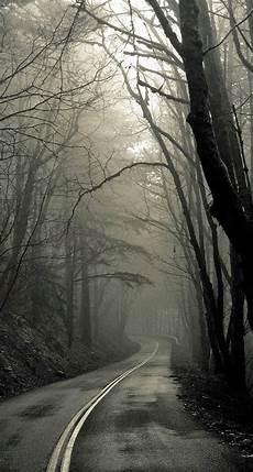 Creepy Wallpaper Iphone creepy forest road iphone 6 plus hd wallpaper ipod
