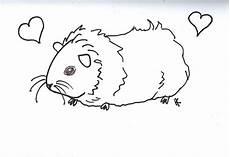 Meerschweinchen Ausmalbilder Malvorlagen Guinea Pig Coloring Pages To And Print For Free