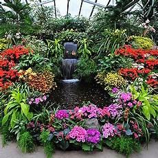 pflanzen für wintergarten wintergarten bepflanzen pflanzen f 252 r den wintergarten
