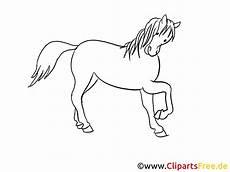 Pferde Malvorlagen Gratis Malvorlage Pferde Kostenlos