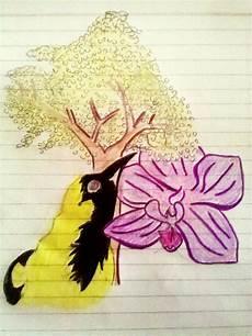 dibujo de la flor nacional de venezuela s 237 mbolos nacionales de venezuela orquidea flor araguaney 193 rbol turpial p 193 jaro aurora