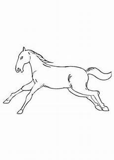 ausmalbilder galoppierendes pferd pferde malvorlagen