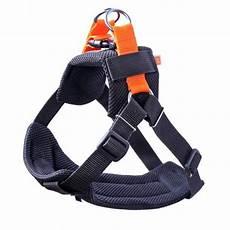 sicherheitsgurt für hunde kardi air 3d sicherheitsgurt f 252 r hunde maluch at
