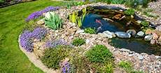 How Much Energy Does A Koi Pond Consume Doityourself