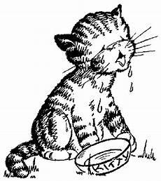 Katzen Malvorlagen Chords Katzen Malvorlagen Malvorlagen1001 De