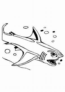 ausmalbild tiere haie ausmalbilder1001 de