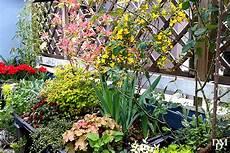terrazzo fiorito un terrazzo fiorito low cost si pu 242 fare fiori e foglie